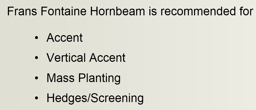 Uses of Frans Fontaine European Hornbeam Trees